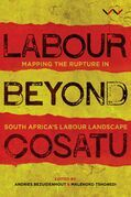 Labour Beyond Cosatu
