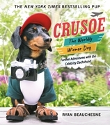 Crusoe, the Worldly Wiener Dog