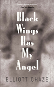 Black Wings Has My Angel