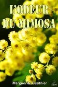 L'odeur du mimosa