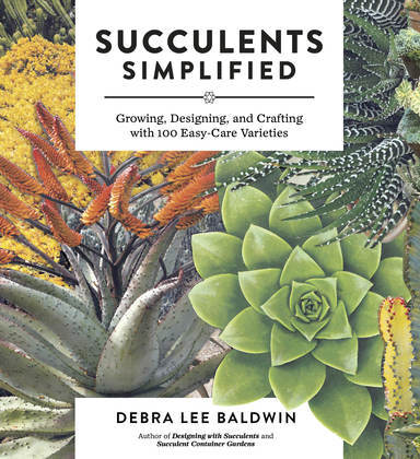 Succulents Simplified