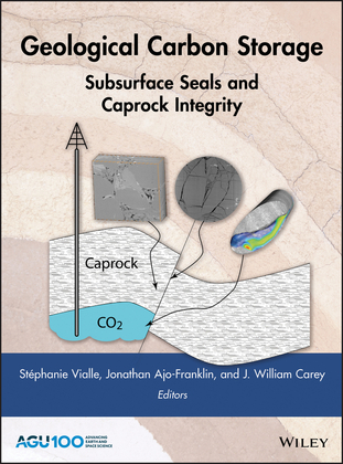 Geological Carbon Storage