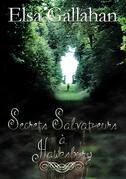 Secrets Salvat?eurs à Hawksbury