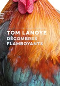 Décombres Flamboyants