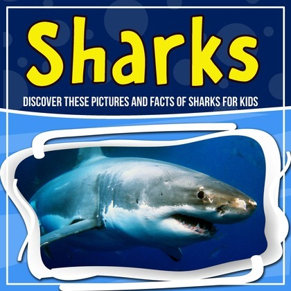 Sharks: Discover These Pictures And Facts Of Sharks For Kids