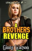 A Brothers Revenge