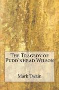 Tragedy Of Pudd' Nhead  Wilson