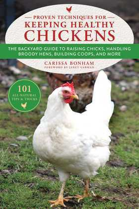 Proven Techniques for Keeping Healthy Chickens
