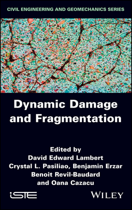 Dynamic Damage and Fragmentation