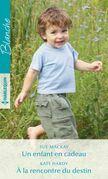 Un enfant en cadeau - À la rencontre du destin