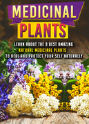 Medicinal Plants: Learn About The 9 Best Amazing Natural Plants To Heal And Protect Your Self Naturally