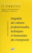 Inégalités des cultures professionnelles, techniques et humanistes des enseignants