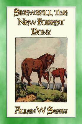 SKEWBALD - The New Forest Pony