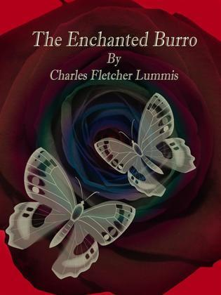 The Enchanted Burro