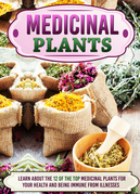 Medicinal Plants Learn About The 12 Of The Top Medicinal Plants For Your Health And Being Immune From Illnesses