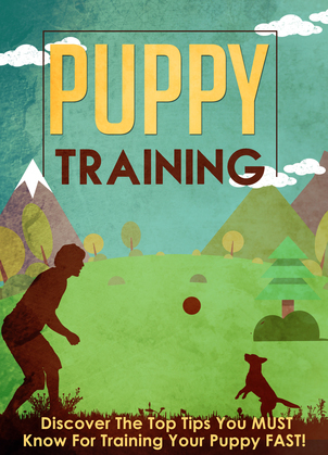 Puppy Training Discover The Top Tips You MUST Know For Training Your Puppy FAST!