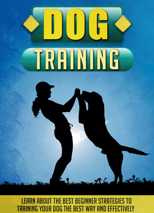 Dog Training Learn About The Best Beginner Strategies To Training Your Dog The Best Way And Effectively