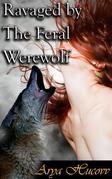 Ravaged By The Feral Werewolf