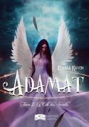 Adamat, tome 2 : La cité des Secrets