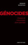 Génocides. Usages et mésusages d'un concept