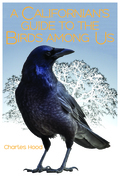 A Californian's Guide to the Birds among Us