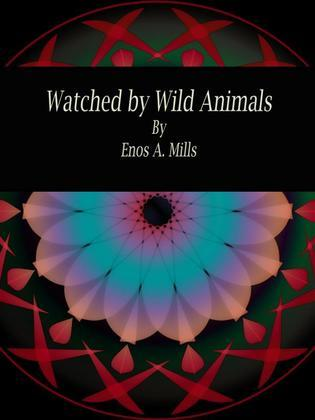 Watched by Wild Animals