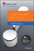 Audit Risk Alert