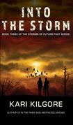 Into the Storm: Book Three of the Storms of Future Past Series