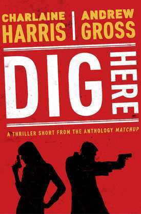 Dig Here