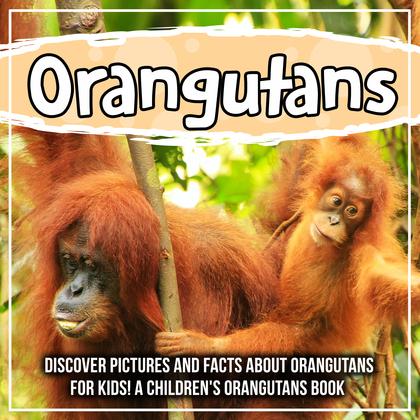 Orangutans : Discover Pictures and Facts About Orangutans For Kids! A Children's Orangutans Book
