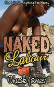 Naked Labour (Explicit Edition)