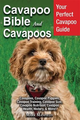 Cavapoo Bible And Cavapoos
