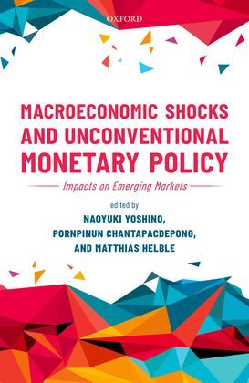 Macroeconomic Shocks and Unconventional Monetary Policy