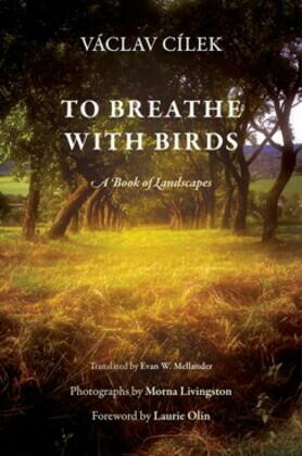 To Breathe with Birds