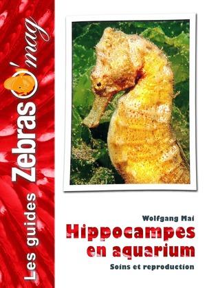Hippocampes en aquarium