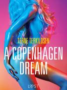 A Copenhagen Dream - erotic short story