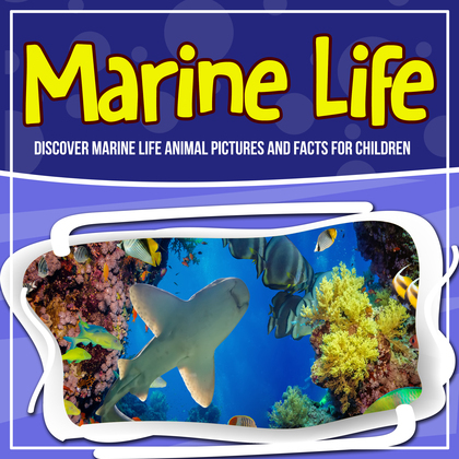 Marine Life: Discover Marine Life Animal Pictures And Facts For Children