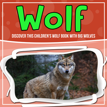 Wolf: Discover This Children's Wolf Book With Big Wolves