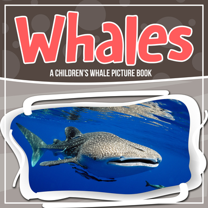 Whales: A Children's Whale Picture Book
