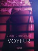 Voyeur - Um conto erótico