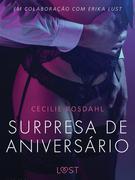 Surpresa de Aniversário - Um conto erótico