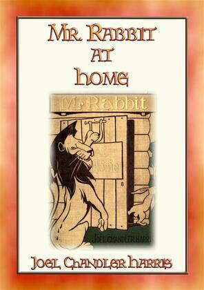 Mr RABBIT AT HOME - 24 Illustrated Children's Stories