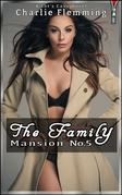 The Family Mansion No.5