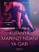 Kufanya Mapenzi Ndani ya Gari - Hadithi Fupi ya Mapenzi