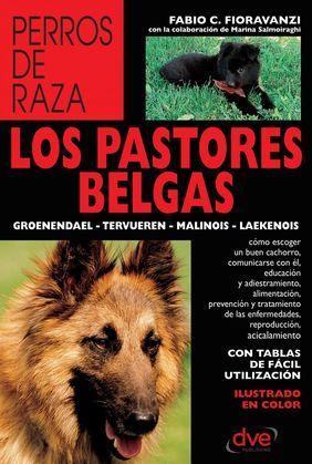 Los pastores belgas: Groenendael - Tervueren - Malinois - Laekenois