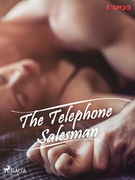 The Telephone Salesman