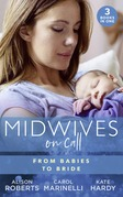 Midwives On Call: From Babies To Bride: Always the Midwife (Midwives On-Call) / Just One Night? / A Promise…to a Proposal? (Mills & Boon M&B)