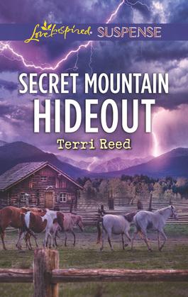 Secret Mountain Hideout (Mills & Boon Love Inspired Suspense)