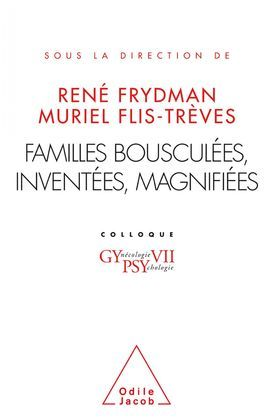 Familles bousculées, inventées, magnifiées