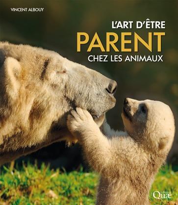 L'art d'être parent chez les animaux